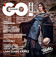 Pleasure 2 go magazine
